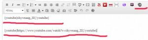 Vixy YouTube Embed кнопка в редакторе