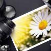 Фотография полезная утилита для изменения размеров картинки